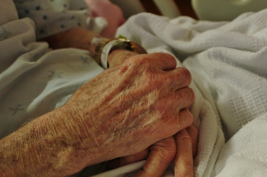 My grandpa's tender hands. I held them for the last time in January. He was nearly 93 when he died on January 20,2012. I miss him so.