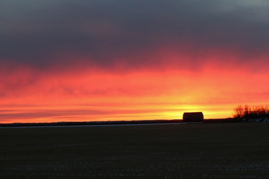 Does one ever tire of a prairie sunset?