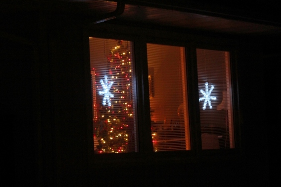 "The only thing ""Christmasy visible from the street"". *sigh*"